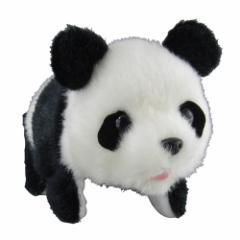 まわりんこパンダ(リニューアル) おもちゃ こども 子供 女の子 人形遊び 3歳