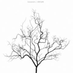 brainchild's/STAY ALIVE (初回限定) 【CD+DVD】