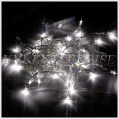 Funderful プチ電飾40球(電池式クリスマスLED電飾) クリスマスパーティー パーティーグッズ 雑貨 クリスマス飾り