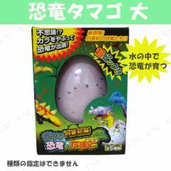 【取寄品】 育てる恐竜のたまご 大 種類指定不可 おもちゃ 玩具 オモチャ フィギュア 人形 コレクター