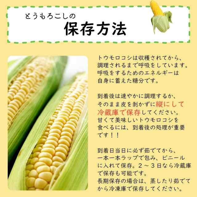 トウモロコシ 原産地