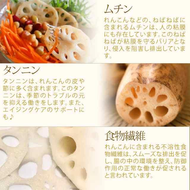 レシピ 1000 れんこん 人気