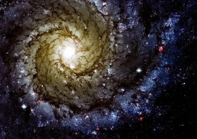 絵画風 壁紙ポスター 銀河 ギャラクシー 渦巻銀河 子持ち銀河 ブラック ...