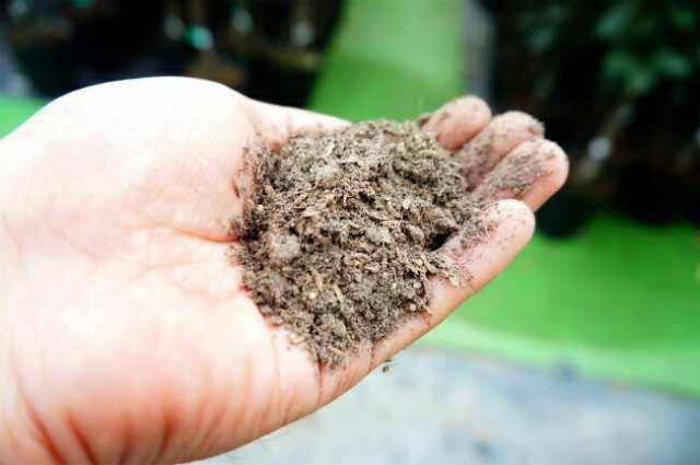 培養 土 おすすめ