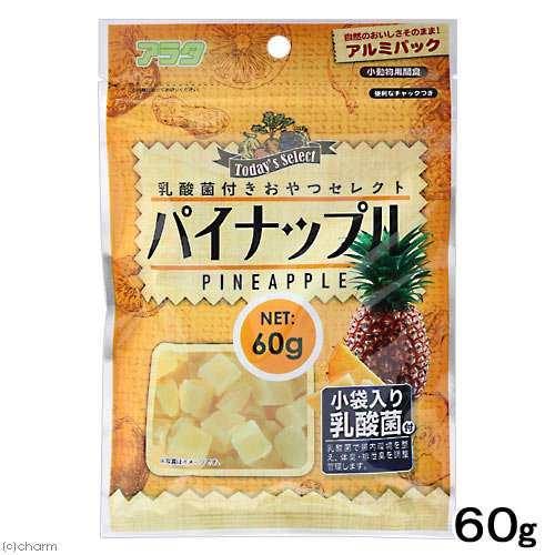 パイナップル ハムスター