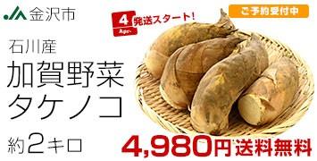 石川加賀野菜タケノコ