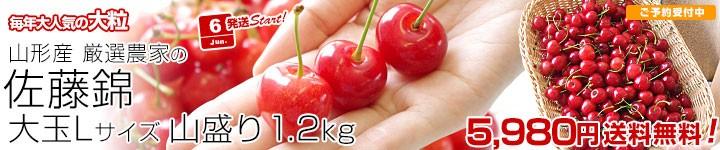 さくらんぼ L 1.2キロ