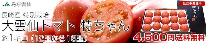 大雲仙トマト「特ちゃん」