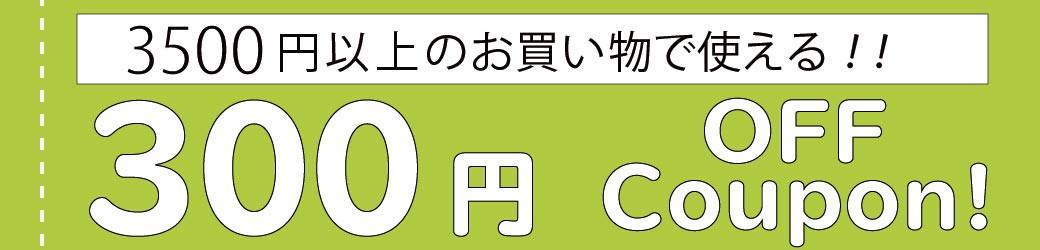 3500円で300円引き