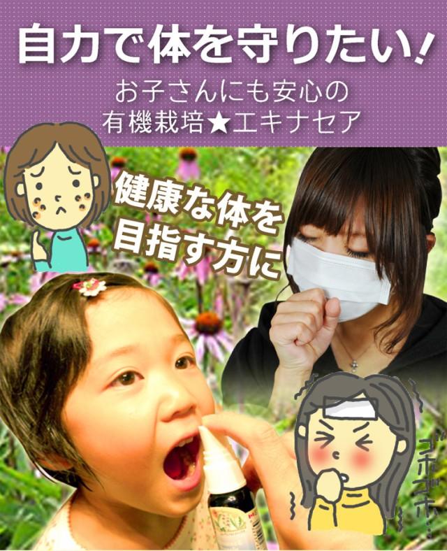 自力で体を守りたい!お子さんにも安心の有機栽培エキナセア 季節の変わり目の体調管理に