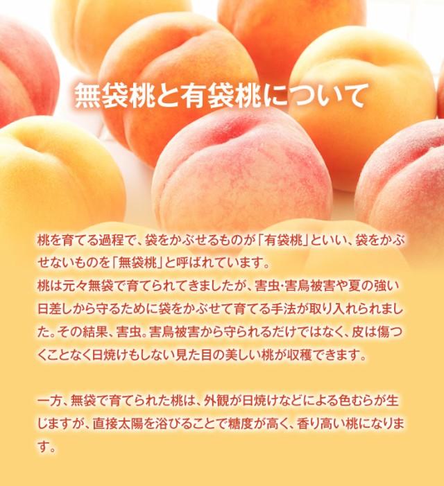 無袋桃と有袋桃について   桃を育てる過程で、袋をかぶせるものが「有袋桃」といい、袋をかぶせないものを「無袋桃」と呼ばれています。桃は元々無袋袋で育てられてきましたが、害虫・害鳥被害や夏の強い日差しから守るために袋をかぶせて育てる手法が取り入れられました。その結果、害虫。害鳥被害から守られるだけではなく、皮は傷つくことなく日焼けもしない見た目の美しい桃ができあがります。一方、無袋で育てられた桃は、外観が日焼けなどによる色むらが生じますが、直接太陽を浴びることで糖度が高く、香り高い桃ができあがります。