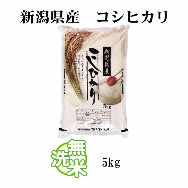 新潟米 こしひかり5kg