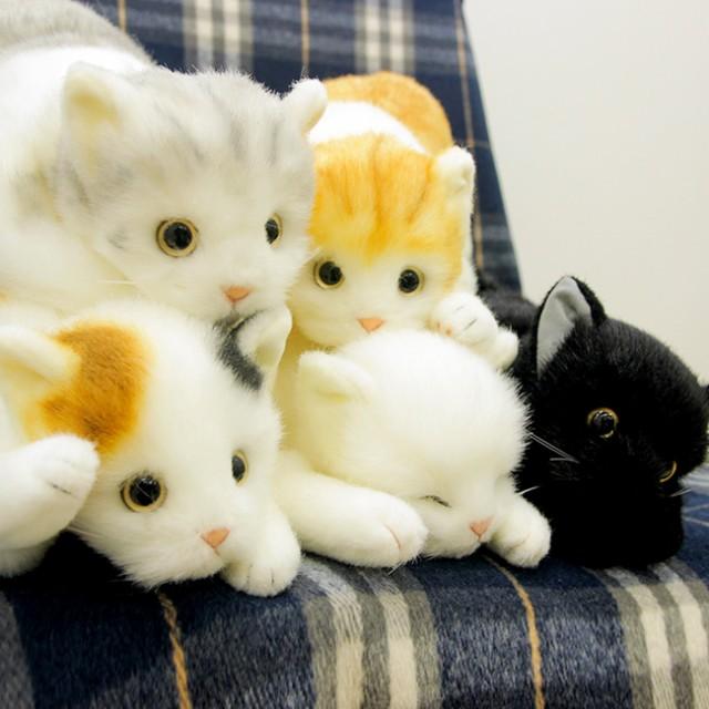 成猫サイズ