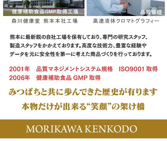森川健康堂 GMCC 450粒