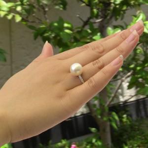 南洋白蝶真珠:リングPT900:プラチナ