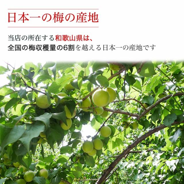 日本一の生産地