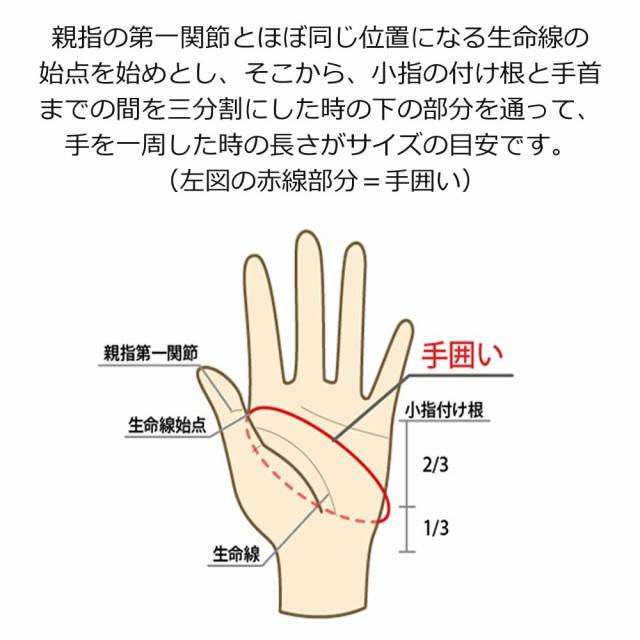 手のサイズ