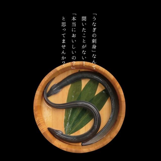 究極のうなぎ料理 静岡県浜名湖産 最高級 うなぎの刺身
