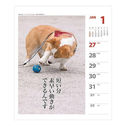 コーギー 犬川柳 週めくり カレンダー 2019 年 壁掛け 卓上 スケジュール いぬ インテリア 150×185mm 2019 Calendar メール便可