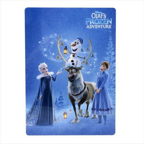 アナと雪の女王 下敷き 両面シタジキ 家族の思い出 ディズニー キャラクターグッズ通販 メール便可