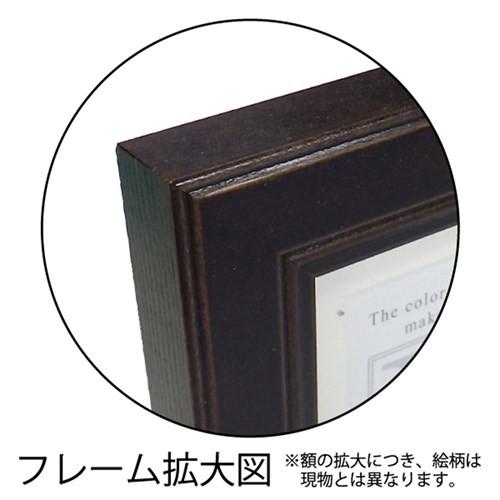 糸井忠晴 メッセージアート ミニ アート フレーム カメだね 12x12cm インテリア グッズ 取寄品
