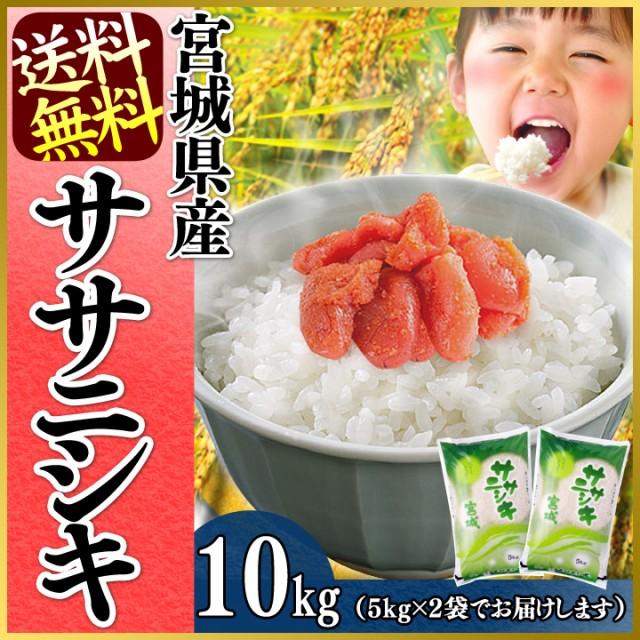 ササニシキ 10kg(5kg×2袋)