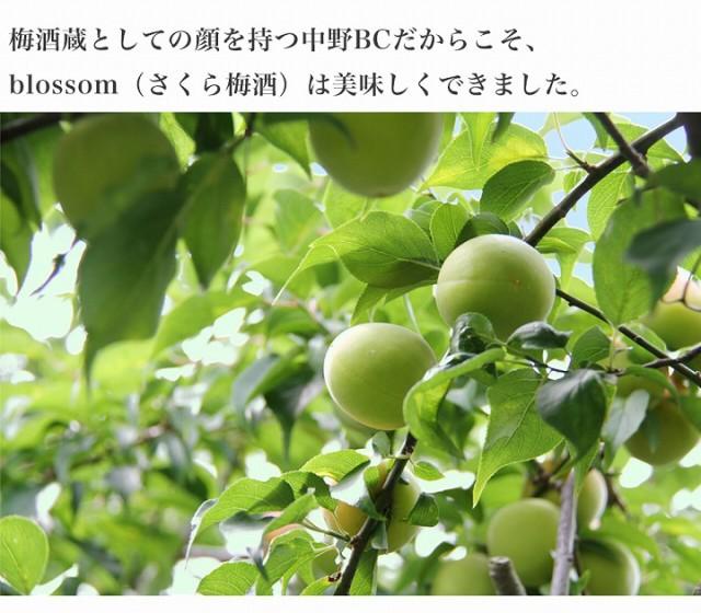 梅酒の大会で日本一になった事もある弊社(中野BC)が作ったから、美味しい梅酒が出来上がりました