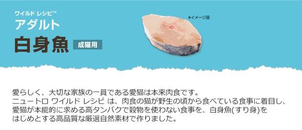 ニュートロ ワイルドレシピ キャットフード アダルト白身魚_r1