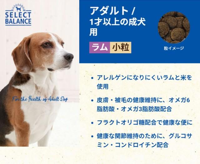 セレクトバランス アダルトラム/1歳以上の成犬用