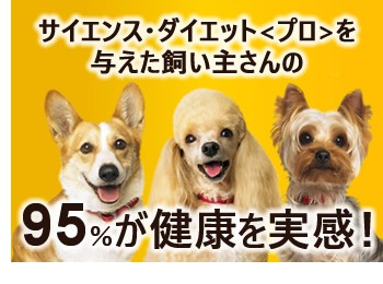 サイエンス・ダイエット(プロ)を与えた飼い主さんの95%が健康を実感!
