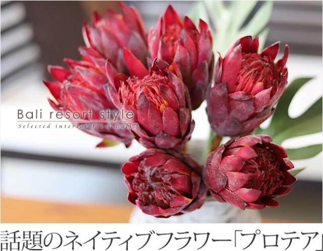 ネイティブフラワー「プロテア」の造花の販売(通販)
