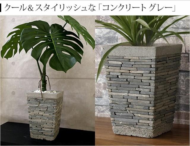 植木鉢 コンクリート