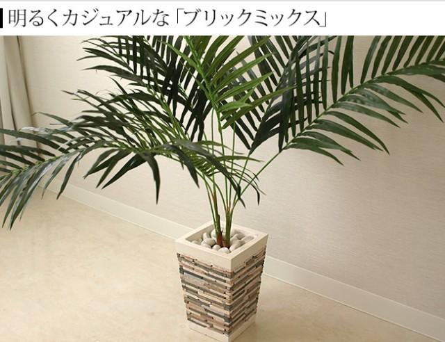 植木鉢 観葉植物