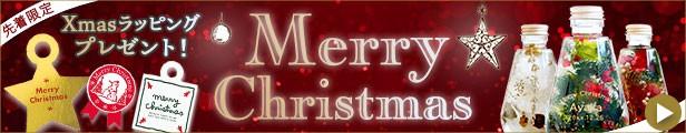 """""""クリスマス""""/"""