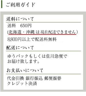 【盆栽】白あけび【ミ