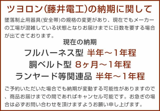 藤井電工納期